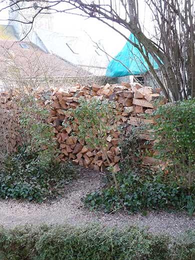 corde de bois abattage